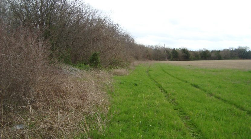29 ac north side of storm water ravine from Goode